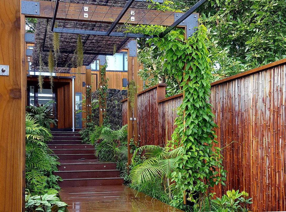 Bamboo cladding to walls and fences harmonises with use of timber in strctures